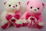 13 inch Two Color Bear with Lacey Heart and Sound