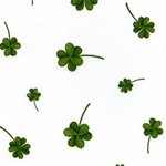 4in x 2.75in x 9in LUCKY SHAMROCK Printed Cello Bags